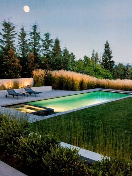 Luxury Pool Landscaping Ideas Tall Grass