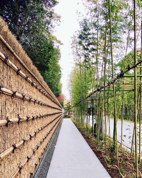 Magnificent Bamboo Fence Design Ideas