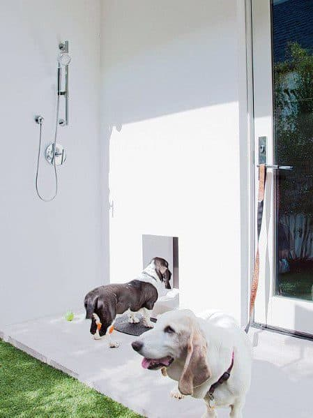 Magnificent Doggy Door Design Ideas For Modern Homes