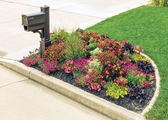 Top 30 Best Mailbox Landscaping Ideas Plant Designs