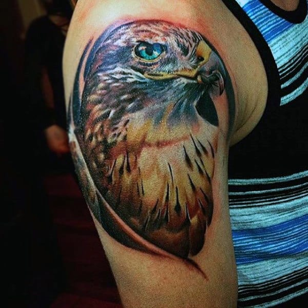 Majestic Hawk Tattoo With Strong Color On Males Upper Arm