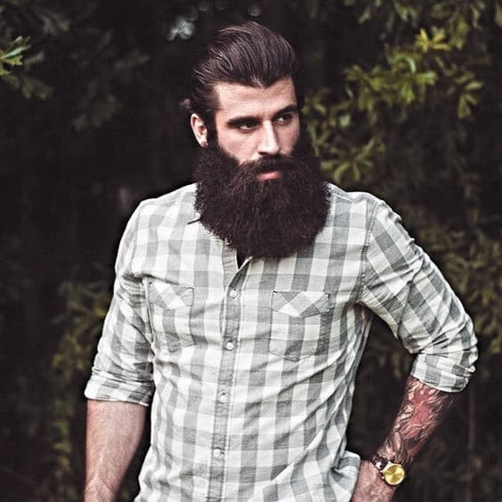 Male Awesome Beard Style