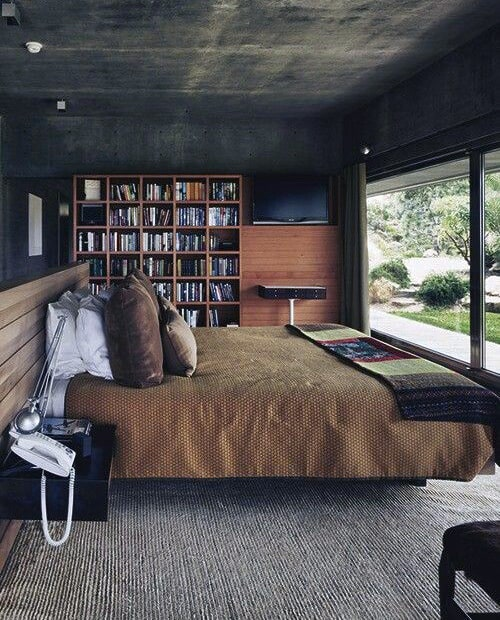 Male Bedroom Paint Colors With Bookcase In Room