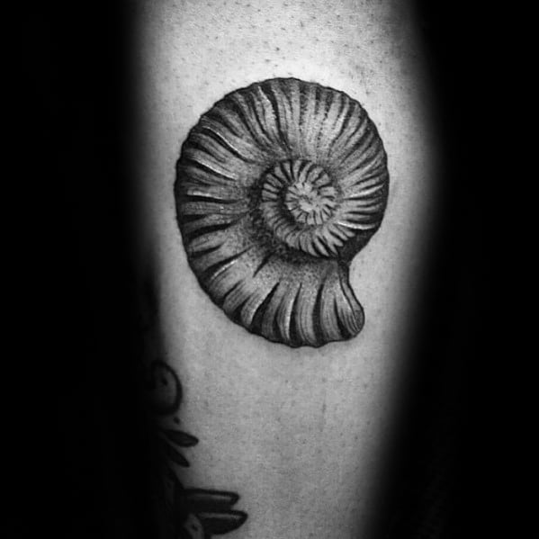 Male Cool Ammonite Tattoo Ideas On Inner Forearm