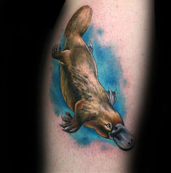 Male Cool Platypus Tattoo Ideas On Arm