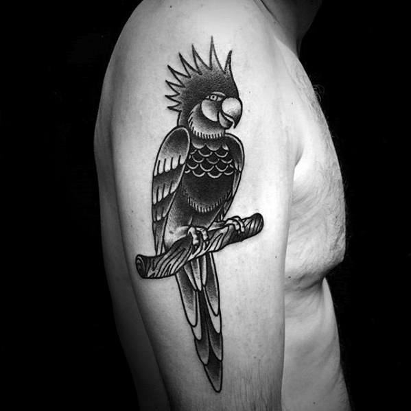 Male Parrot Tattoo Ideas On Arm