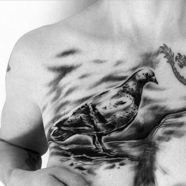 Male Pigeon Tattoo Design Inspiration