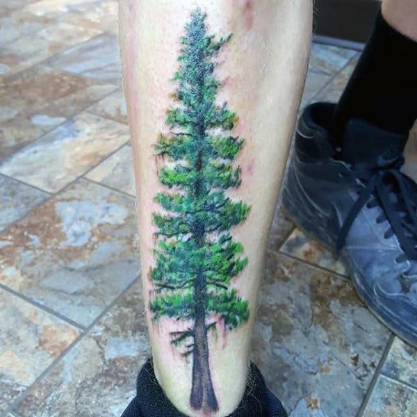 Male Pine Tree Shin Tattoos