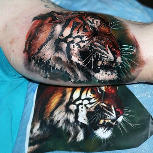 Male Upper Arms Cool Tiger Face Tattoo