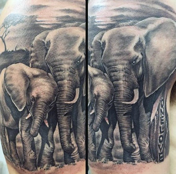 Male Upper Arms Mother And Child Elephant Tattoo