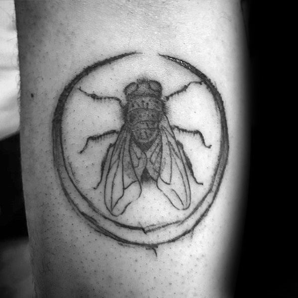 Male With Cool Fly Tattoo Design