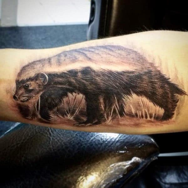 Male With Detailed Honey Badger Tattoo On Arm
