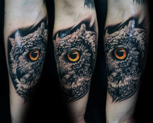 Male With Inner Forearm 3d Realistic Owl Tattoo Design