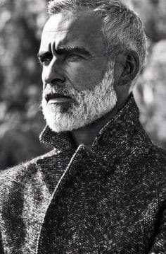 Man Grey Beard Styles