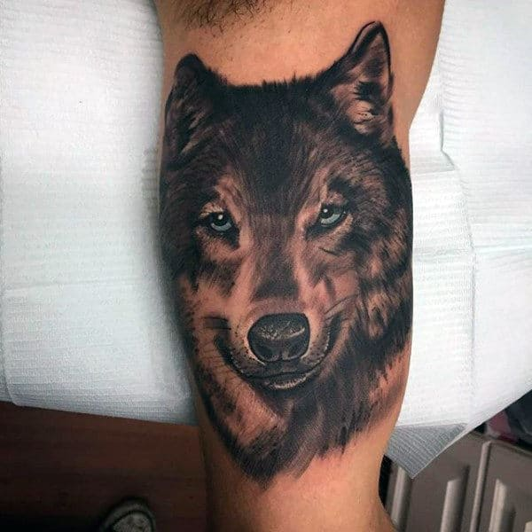 Man With Realistic Wolf Head Tattoo On Inner Biceps