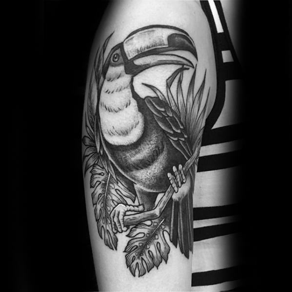 Manly Toucan Tattoo Design Ideas For Men