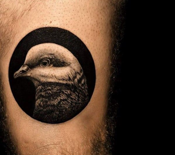 Masculine Pigeon Tattoos For Men