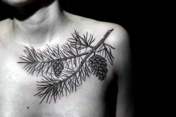 Masculine Pine Cone Tree Branch Guys Shoulder And Chest Tattoo