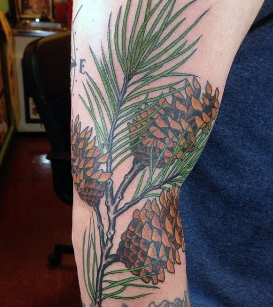 Masculine Pine Tree Branch And Cones Tattoos For Men