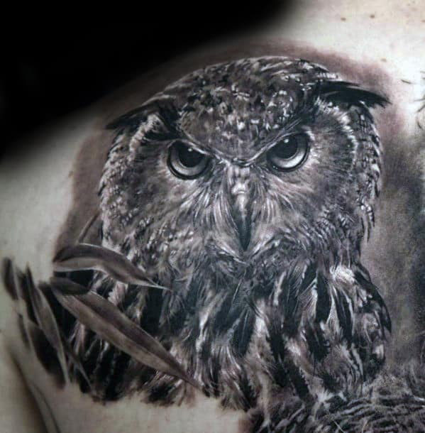 Mens Back Of Shoulder Shaded Realistic Owl Tattoo