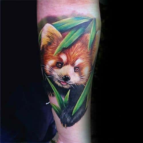 60 Red Panda Tattoo Designs For Men Animal Ink Ideas