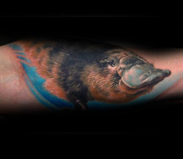 Mens Forearm Tattoo Ideas With Platypus Design