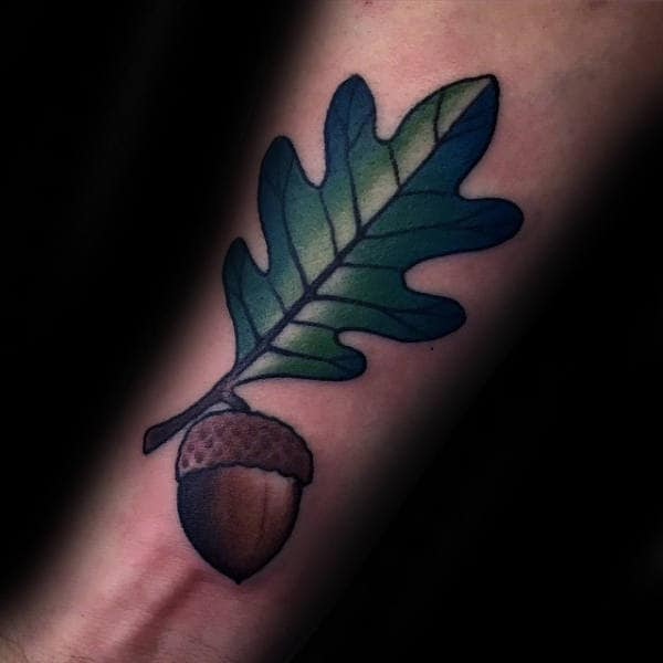 Mens Inner Forearm Tattoo Of Acorn With Oak Leaf