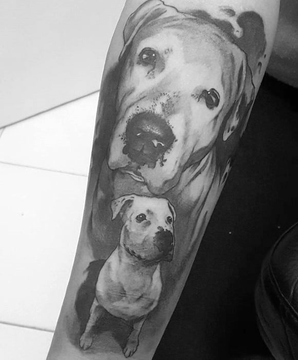 Mens Shaded Black And Grey Pitbull Tattoo Ideas On Forearm