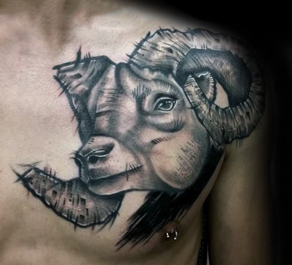 Mens Sketched Ram Shaded Upper Chest Tattoo