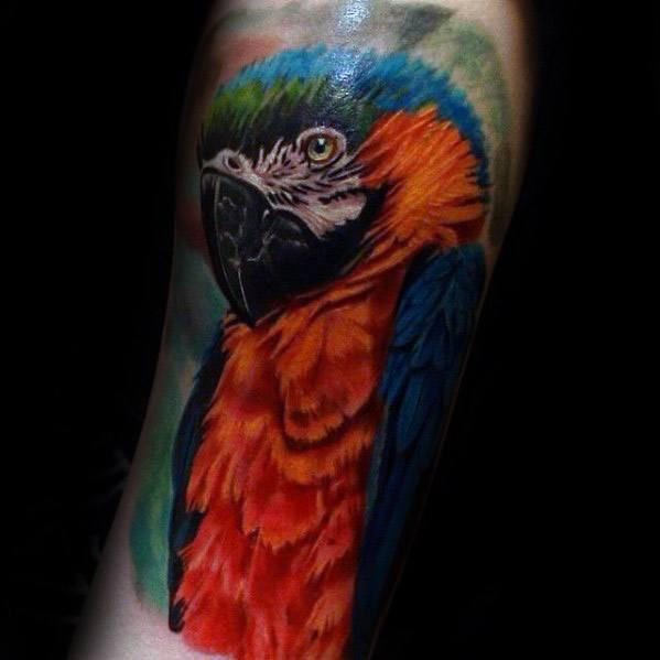 Mens Tattoo Parrot Design On Forearm