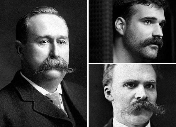 Mens Walrus Mustache Style
