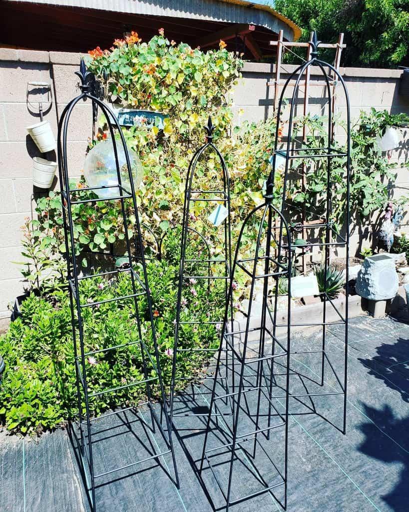 metal garden trellis ideas steady.as.she.grows