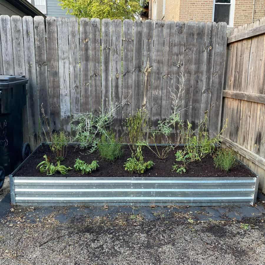 metal raised bed raised garden bed ideas holyknoller