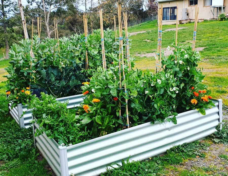 metal raised bed raised garden bed ideas paracombewines