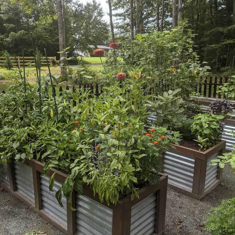 metal raised bed raised garden bed ideas virginia_gardening