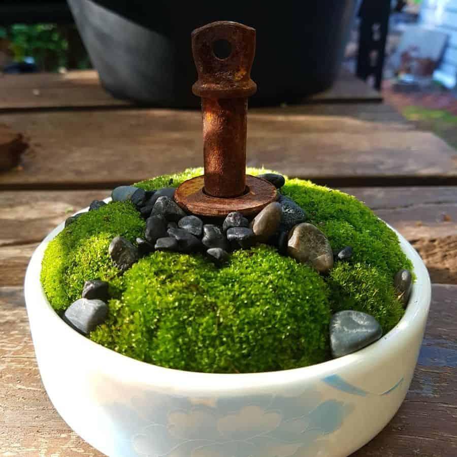 mini zen garden ideas hey_what_the_succ