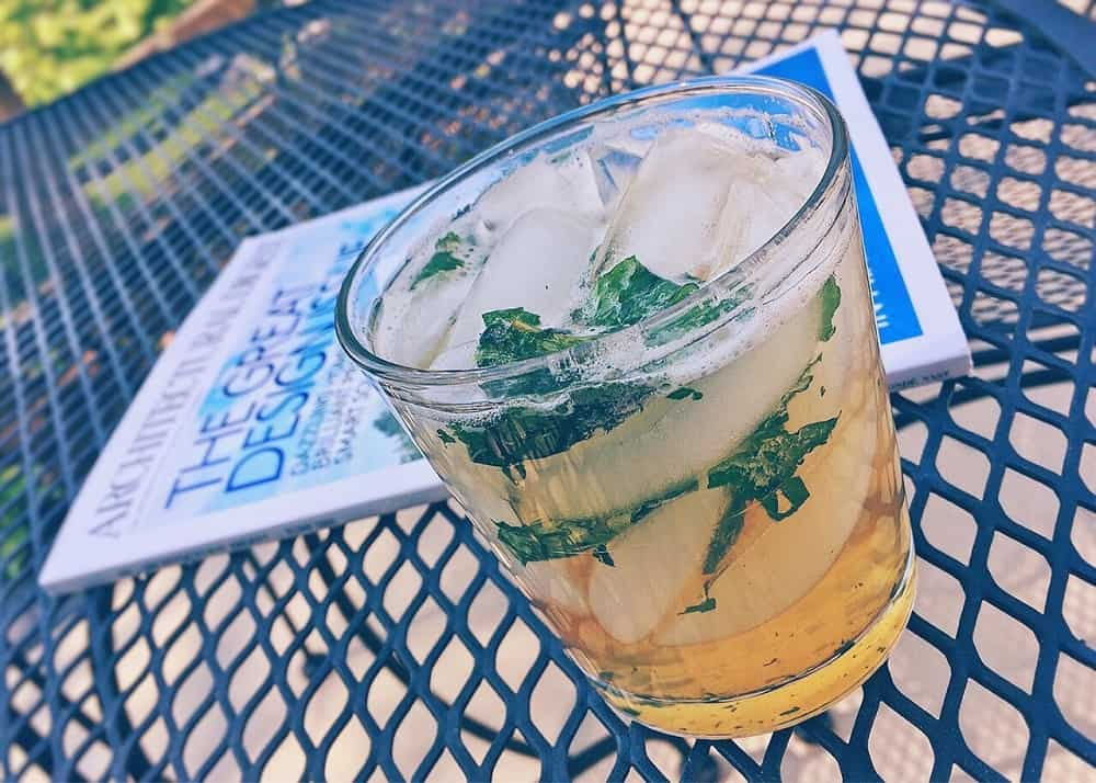 glass of mint julep beverage cocktail with ice cubes