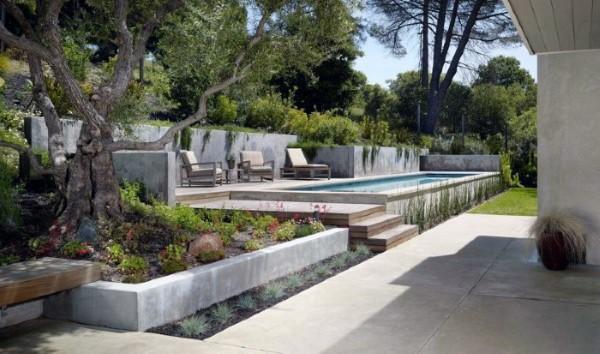 Modern Backyard Landscape