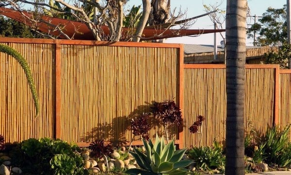 Modern Bamboo Fence Backyard Design