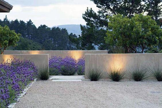 Modern Design Landscaping