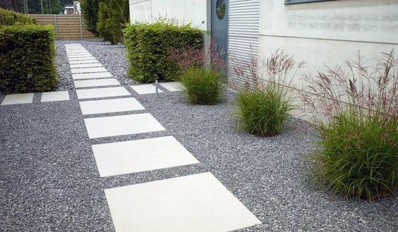 Modern Landscaping Plants