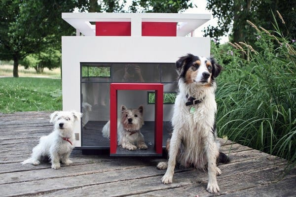 Modern Luxury Dog House Designs