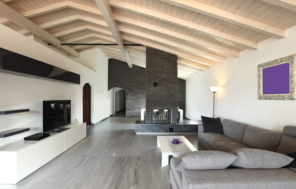 Modern Minimalist Living Room 5