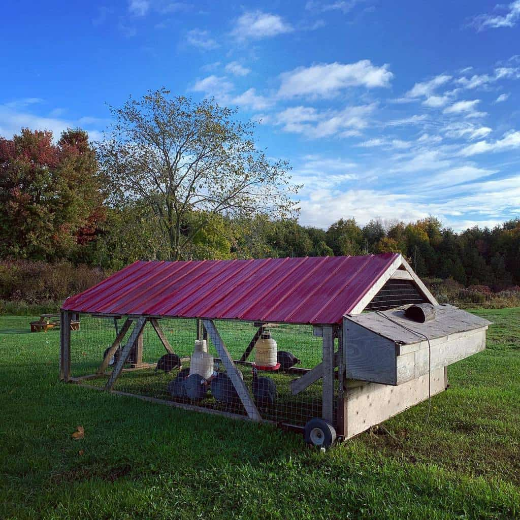 movable chicken coop ideas the_heritage_nest