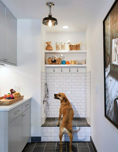 Mudroom Dog Bathing Area Design Ideas