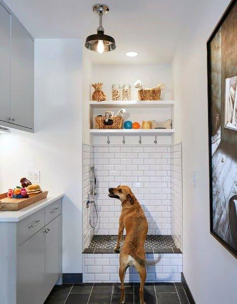 Mudroom Dog Bathing Area Design Ideas