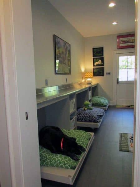 Merveilleux Multiple Dog Beds Dog Room Ideas