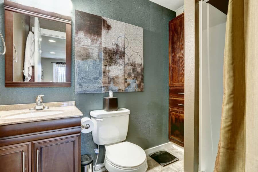 Muted Color Small Bathroom Paint Ideas 2