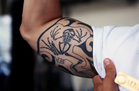 Navy Seal Bone Frog Bicep Tattoos For Men