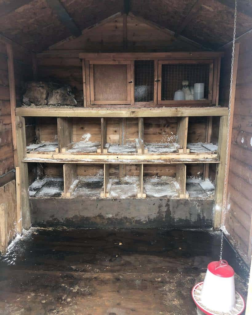 nesting box chicken coop ideas inthecooper